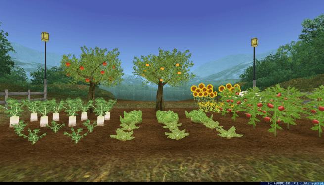 栽培 | トーラム オンライン